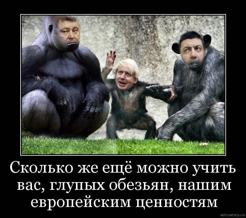 Сколько же ещё можно учить вас, глупых обезьян, нашим европейским ценностям