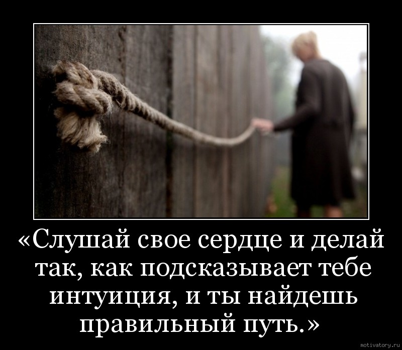 «Слушай свое сердце и делай так, как подсказывает тебе интуиция, и ты найдешь правильный путь.»