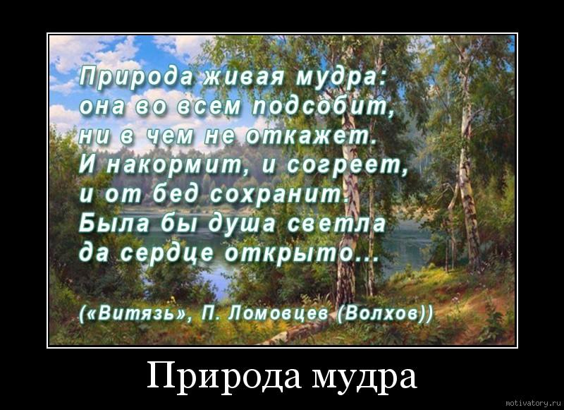Природа мудра