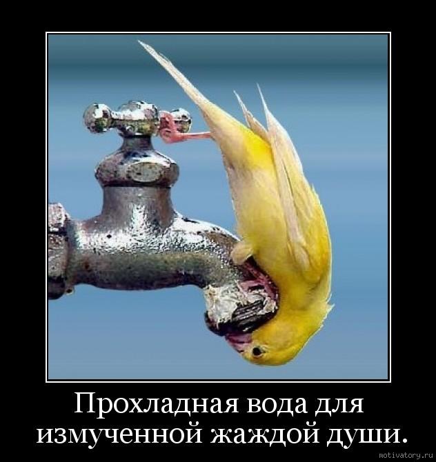 Прохладная вода для измученной жаждой души.
