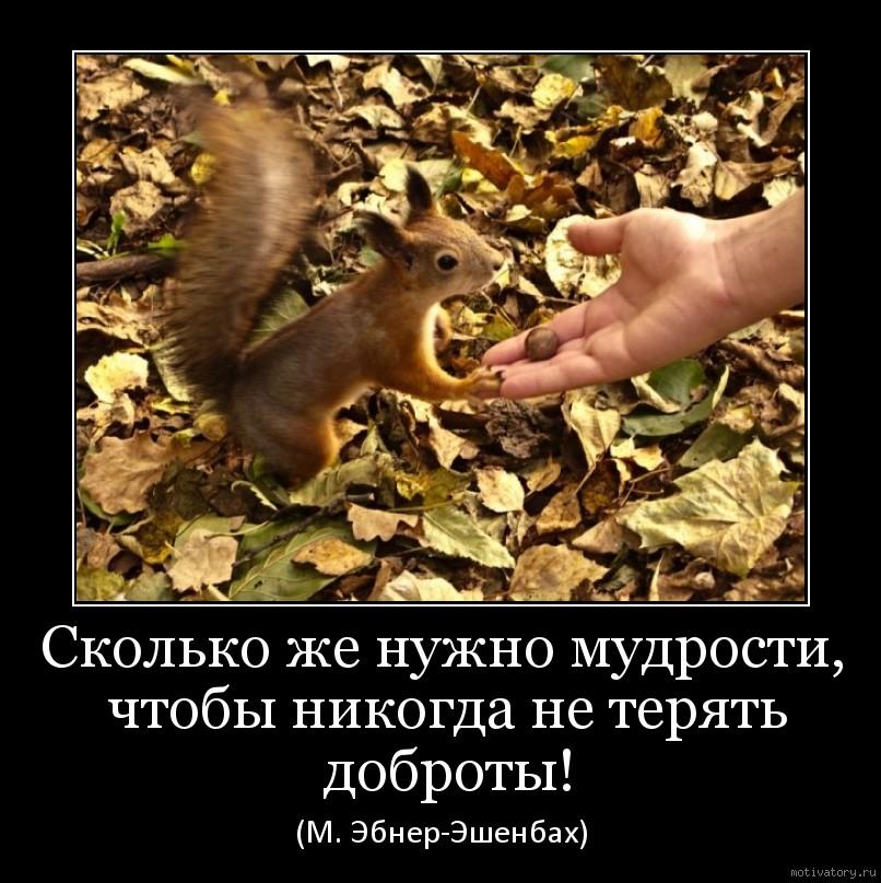 Сколько же нужно мудрости, чтобы никогда не терять доброты!