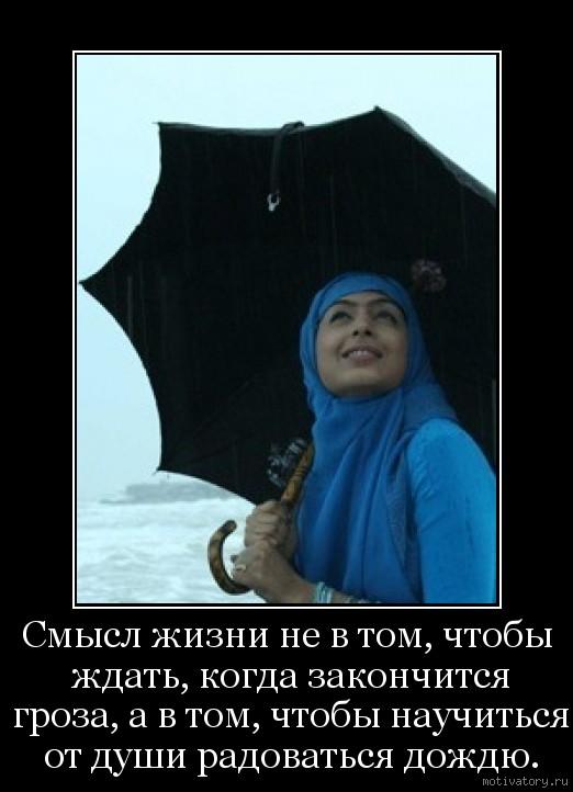 Смысл жизни не в том, чтобы ждать, когда закончится гроза, а в том, чтобы научиться от души радоваться дождю.