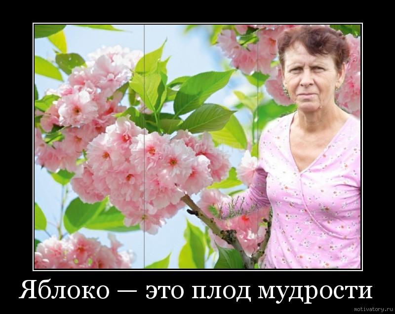 Яблоко — это плод мудрости