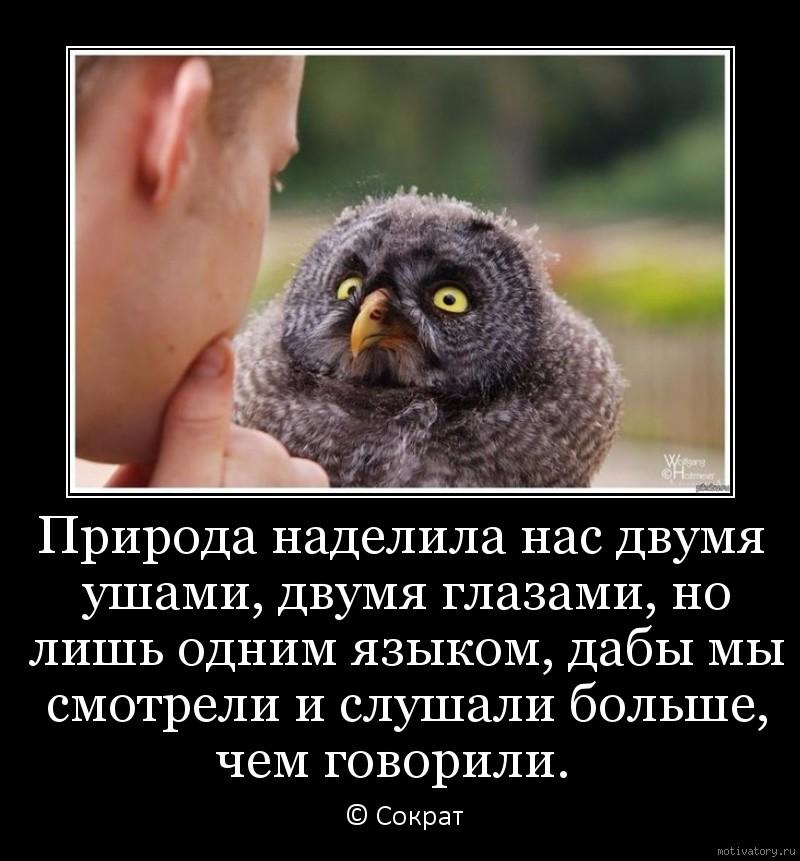 Природа наделила нас двумя ушами, двумя глазами, но лишь одним языком, дабы мы смотрели и слушали больше, чем говорили.
