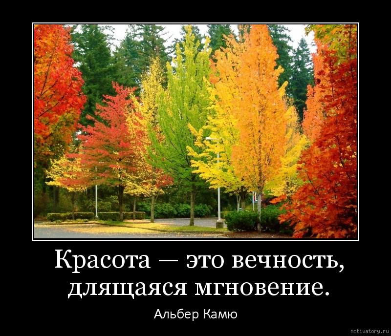 Красота — это вечность, длящаяся мгновение.