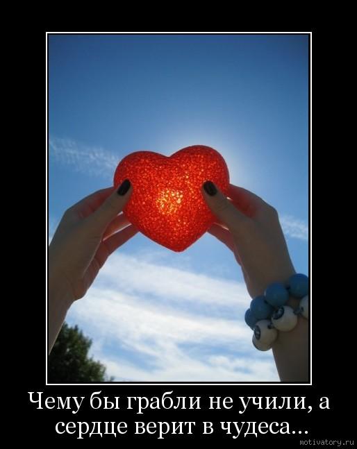 Чему бы грабли не учили, а сердце верит в чудеса…