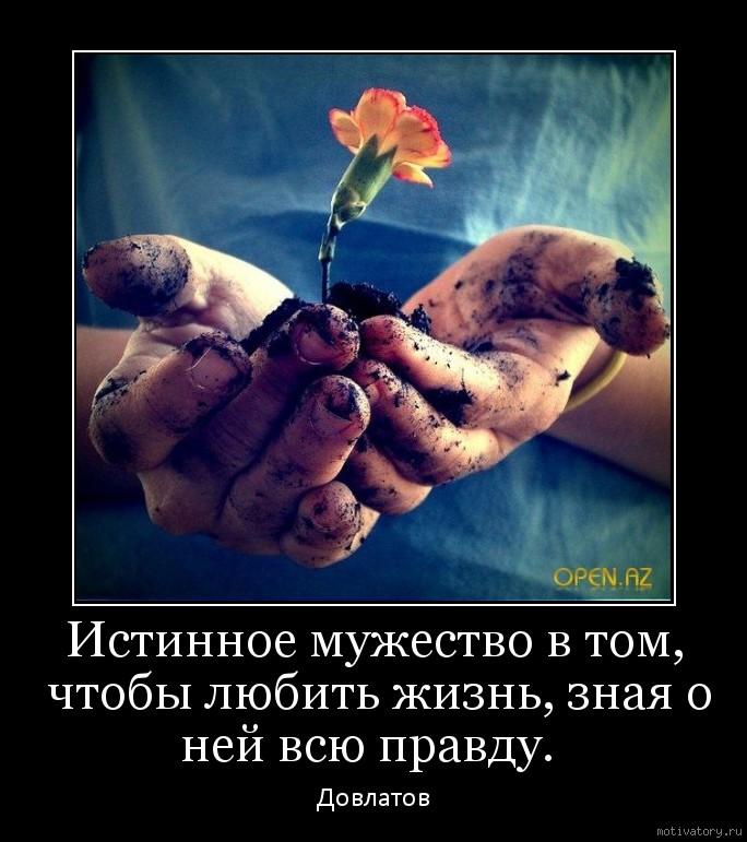 Любить жизнь зная о ней всю правду