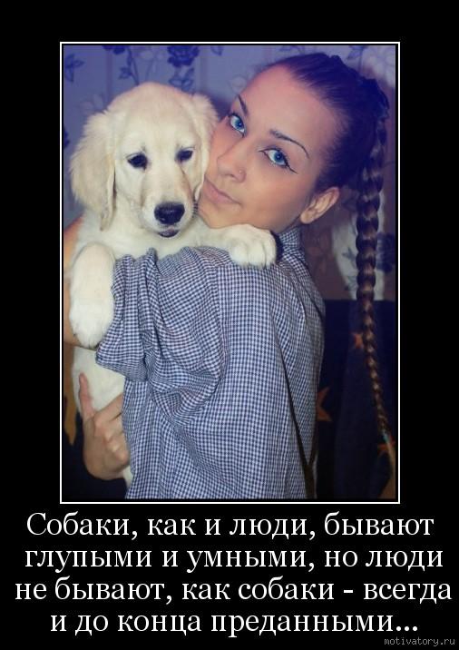 Собаки, как и люди, бывают глупыми и умными, но люди не бывают, как собаки - всегда и до конца преданными...
