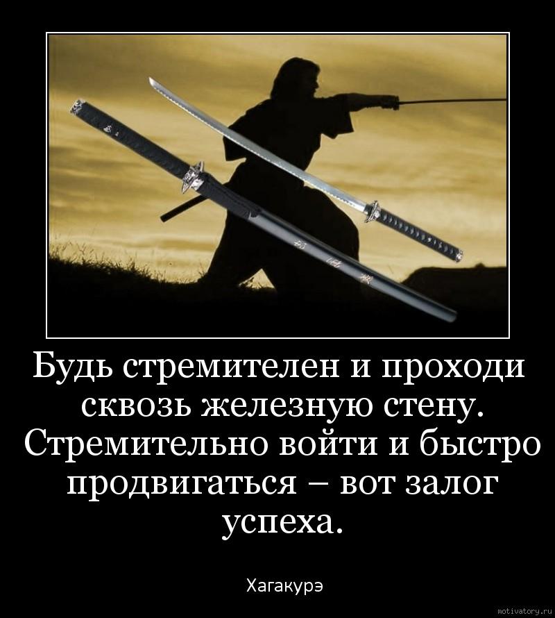 Будь стремителен и проходи сквозь железную стену. Стремительно войти и быстро продвигаться – вот залог успеха.