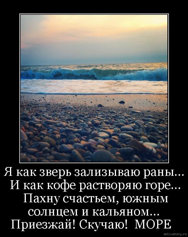 ним стихи о море песке солнце