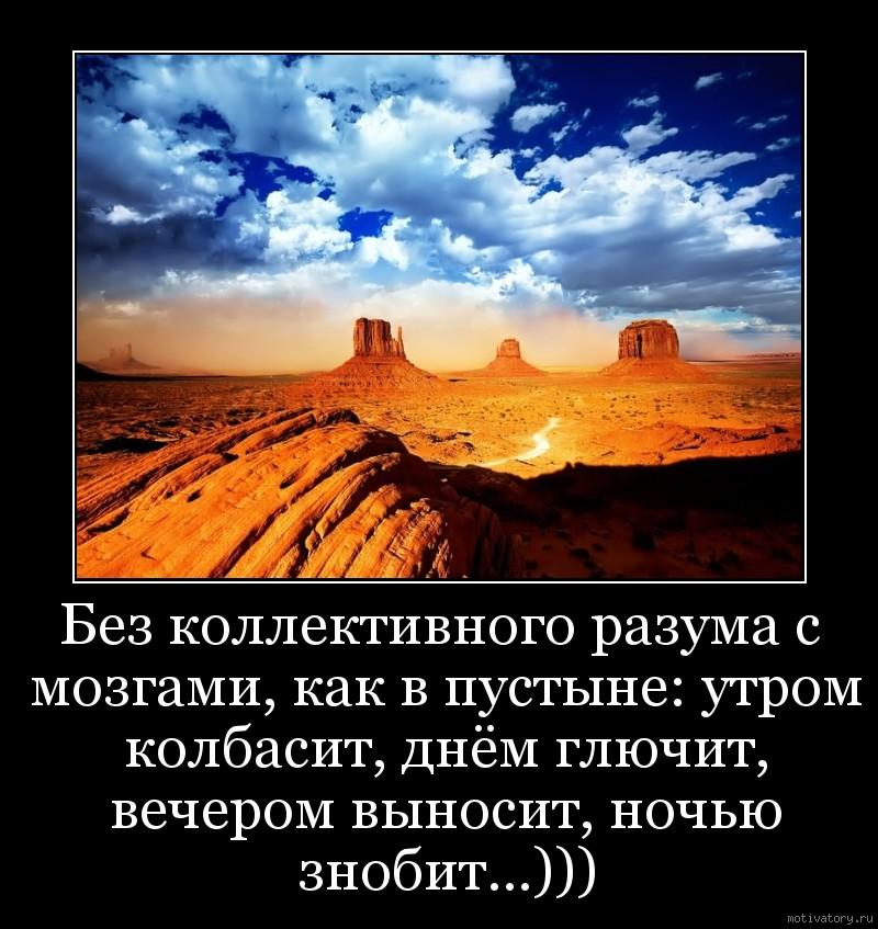 Без коллективного разума с мозгами, как в пустыне: утром колбасит, днём глючит, вечером выносит, ночью знобит...)))