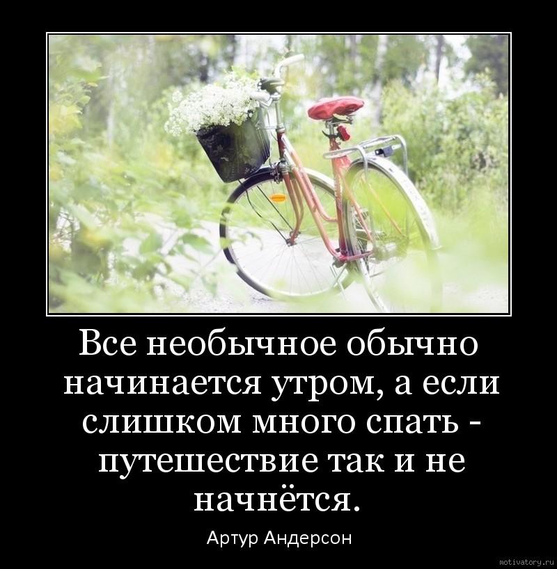 Все необычное обычно начинается утром, а если слишком много спать - путешествие так и не начнётся.