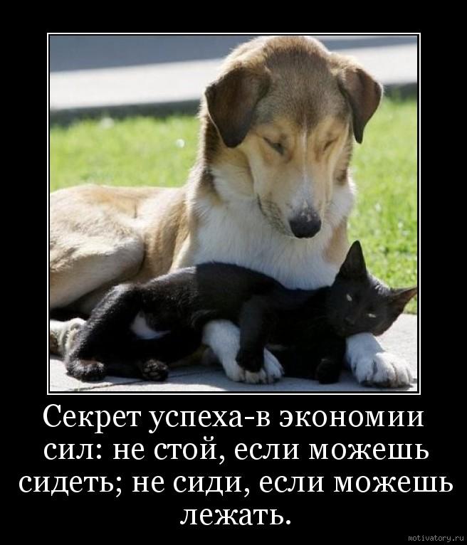 Секрет успеха-в экономии сил: не стой, если можешь сидеть; не сиди, если можешь лежать.