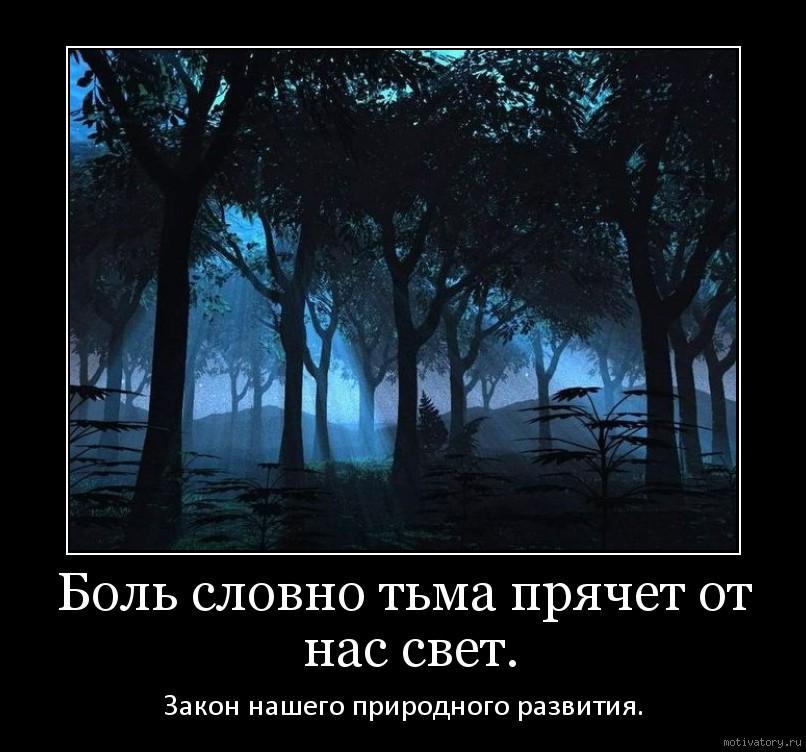 Боль словно тьма прячет от нас свет.