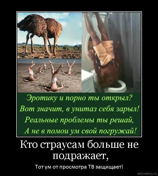 Кто страусам больше не подражает,