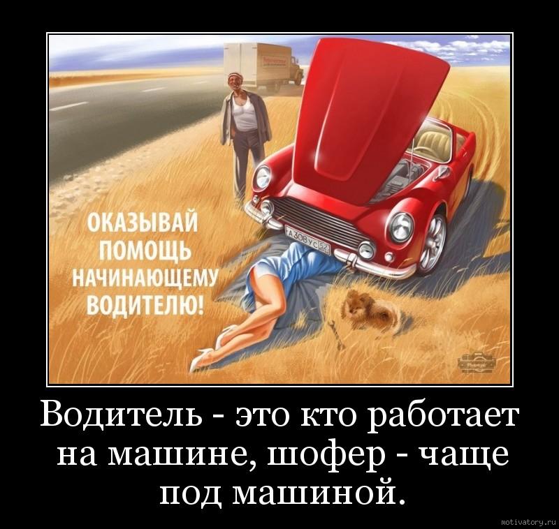 Водитель - это кто работает на машине, шофер - чаще под машиной.