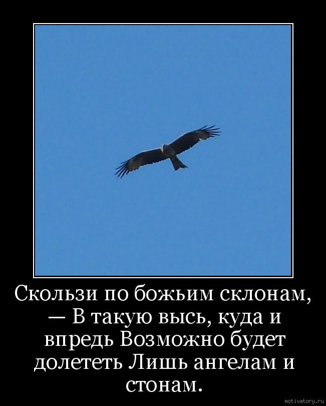 Скользи по божьим склонам, — В такую высь, куда и впредь Возможно будет долететь Лишь ангелам и стонам.