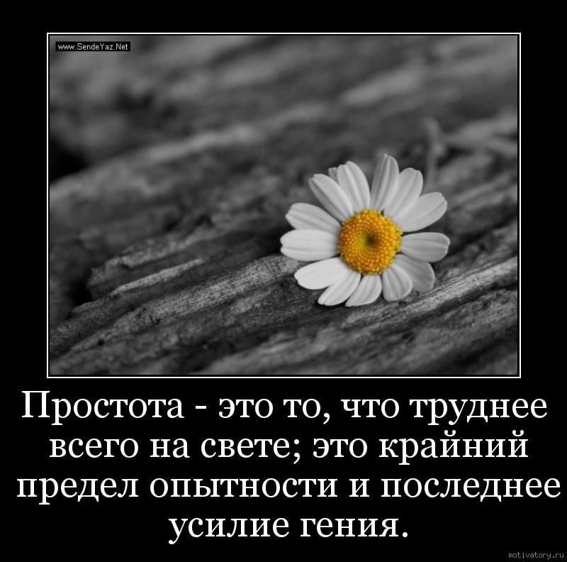 Простота - это то, что труднее всего на свете; это крайний предел опытности и последнее усилие гения.