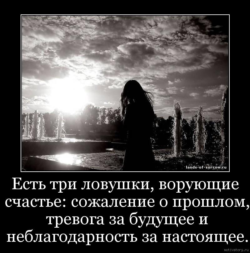 Есть три ловушки, ворующие счастье: сожаление о прошлом, тревога за будущее и неблагодарность за настоящее.