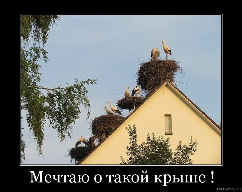 Мечтаю о такой крыше !