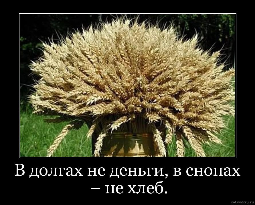 В долгах не деньги, в снопах – не хлеб.