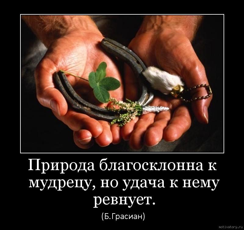 Природа благосклонна к мудрецу, но удача к нему ревнует.