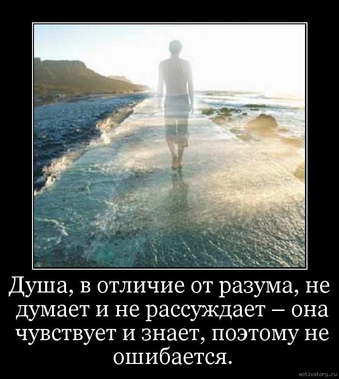 Душа, в отличие от разума, не думает и не рассуждает – она чувствует и знает, поэтому не ошибается.