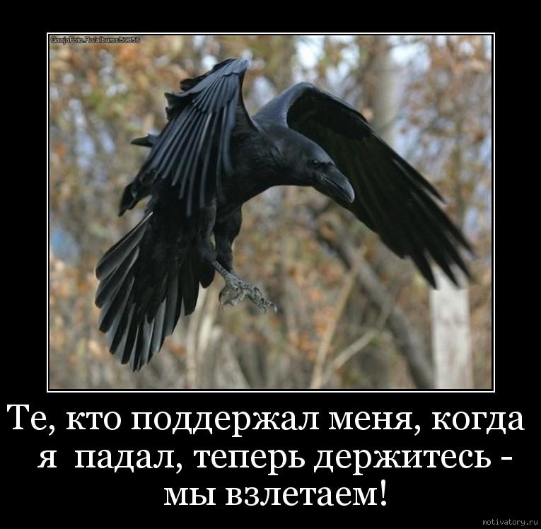 Те, кто поддержал меня, когда  я  падал, теперь держитесь - мы взлетаем!