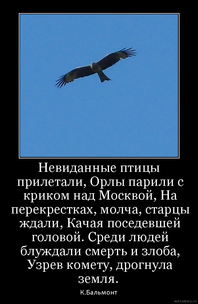 Невиданные птицы прилетали, Орлы парили с криком над Москвой, На перекрестках, молча, старцы ждали, Качая поседевшей головой. Среди людей блуждали смерть и злоба, Узрев комету, дрогнула земля.