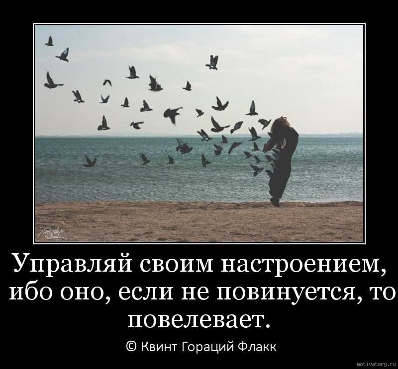 Управляй своим настроением, ибо оно, если не повинуется, то повелевает.