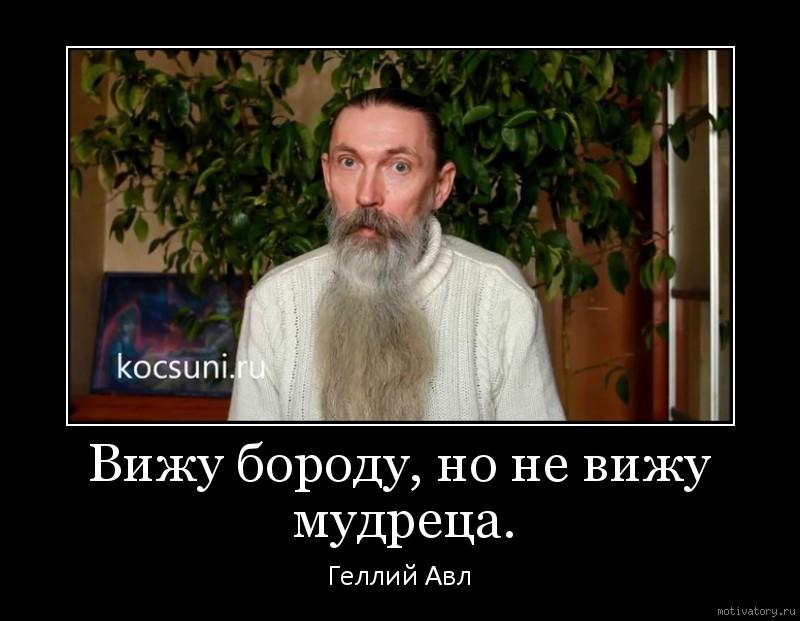 Вижу бороду, но не вижу мудреца.