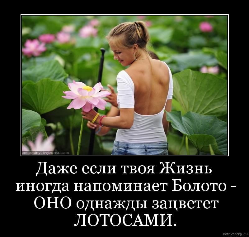 Даже если твоя Жизнь иногда напоминает Болото - ОНО однажды зацветет ЛОТОСАМИ.