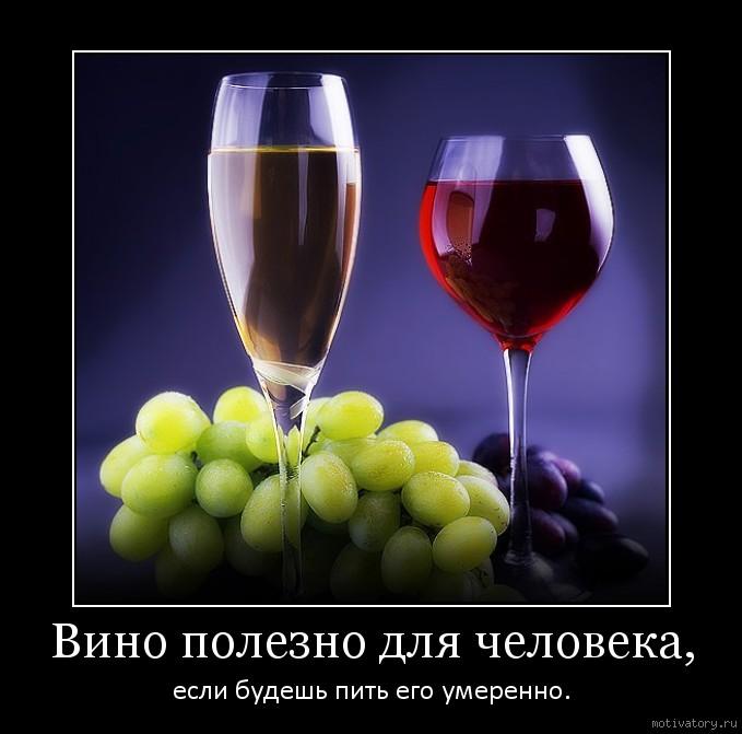 Вино полезно для человека,