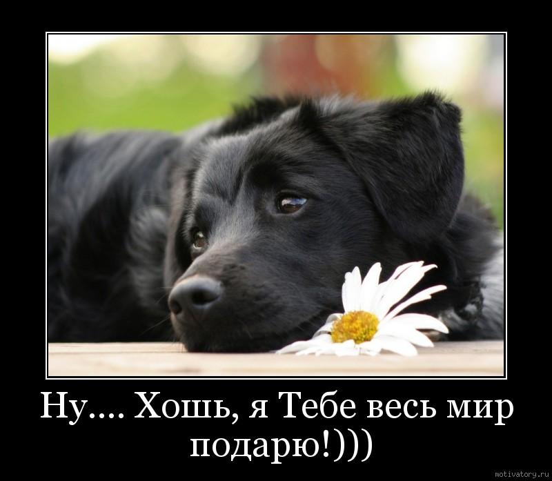 Ну.... Хошь, я Тебе весь мир подарю!)))