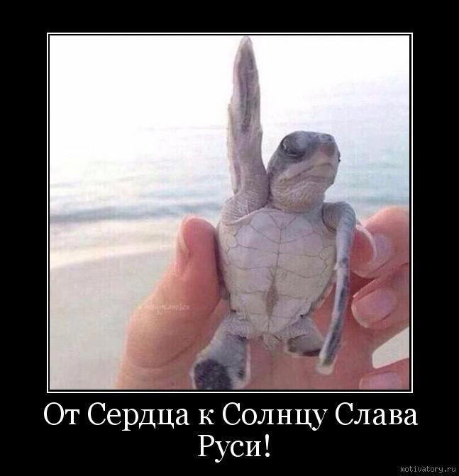 От Сердца к Солнцу Слава Руси!