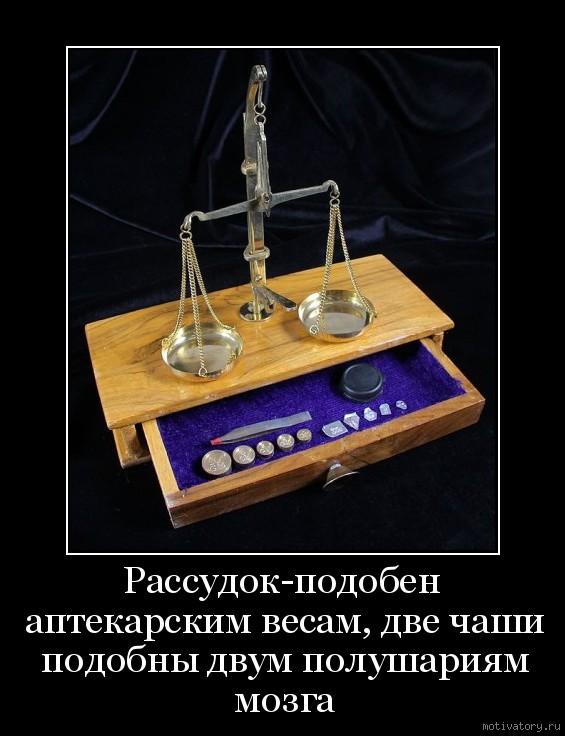 Рассудок-подобен аптекарским весам, две чаши подобны двум полушариям мозга