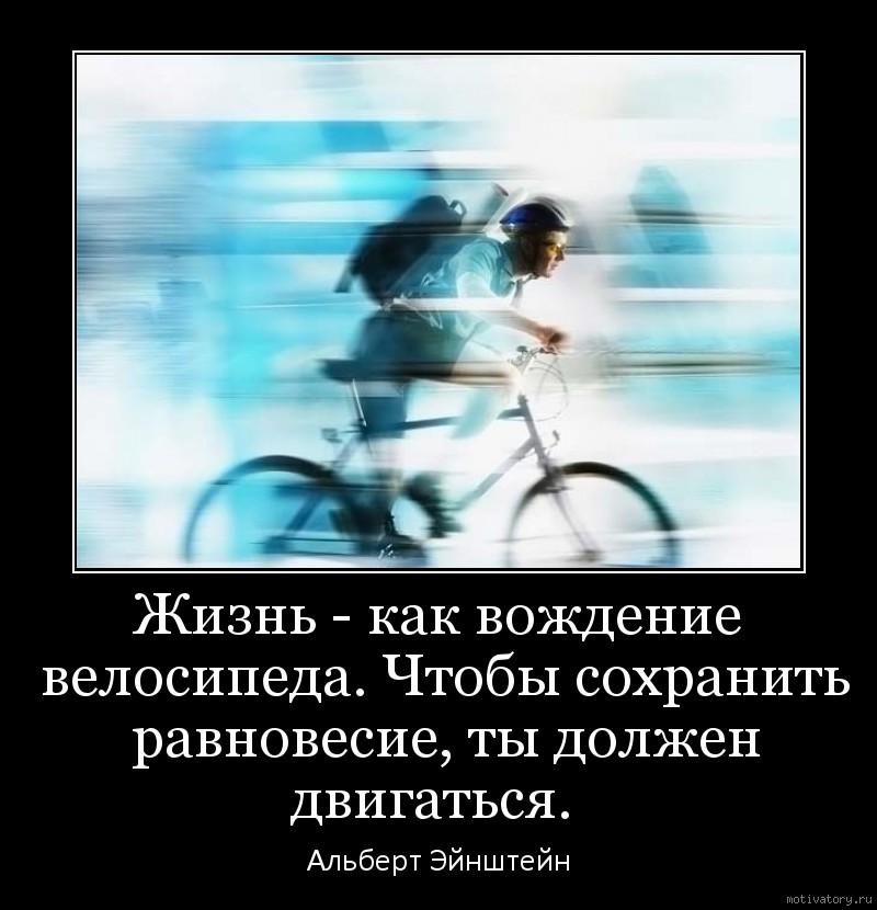Жизнь как вождение велосипеда чтобы