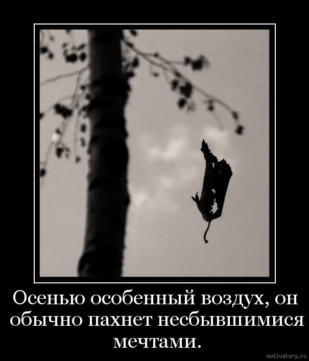 Осенью особенный воздух, он обычно пахнет несбывшимися мечтами.