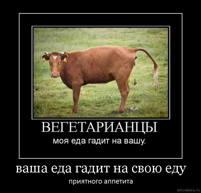 Смешные картинки вегетарианцев