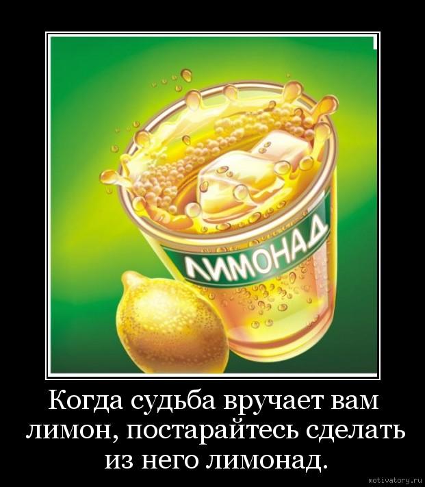 Когда судьба вручает вам лимон, постарайтесь сделать из него лимонад.