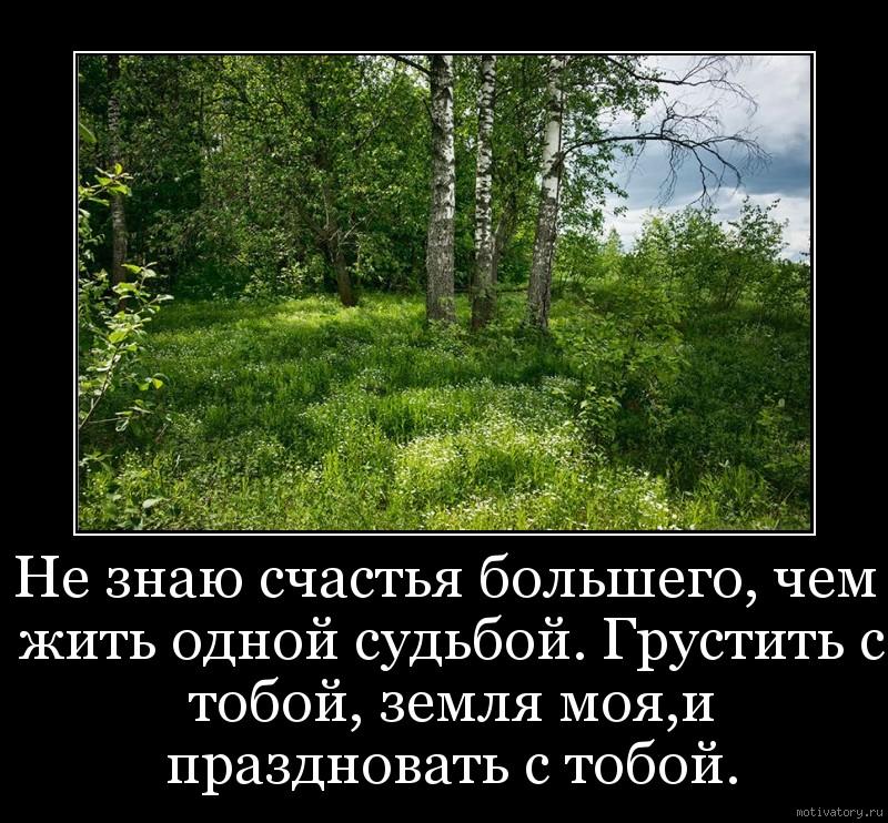 Не знаю счастья большего, чем жить одной судьбой. Грустить с тобой, земля моя,и праздновать с тобой.