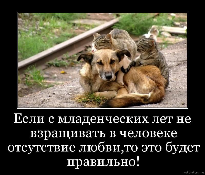 Если с младенческих лет не взращивать в человеке отсутствие любви,то это будет правильно!