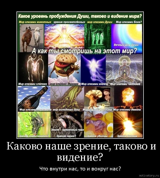 Каково наше зрение, таково и видение?