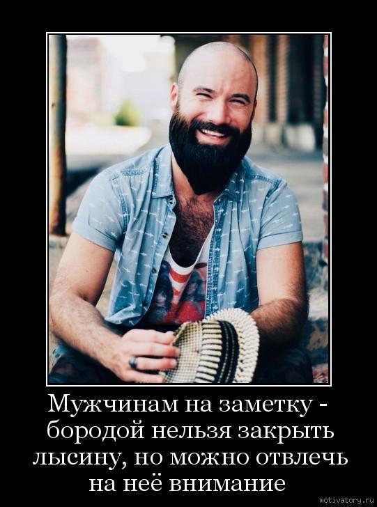 Мужчинам на заметку - бородой нельзя закрыть лысину, но можно отвлечь на неё внимание